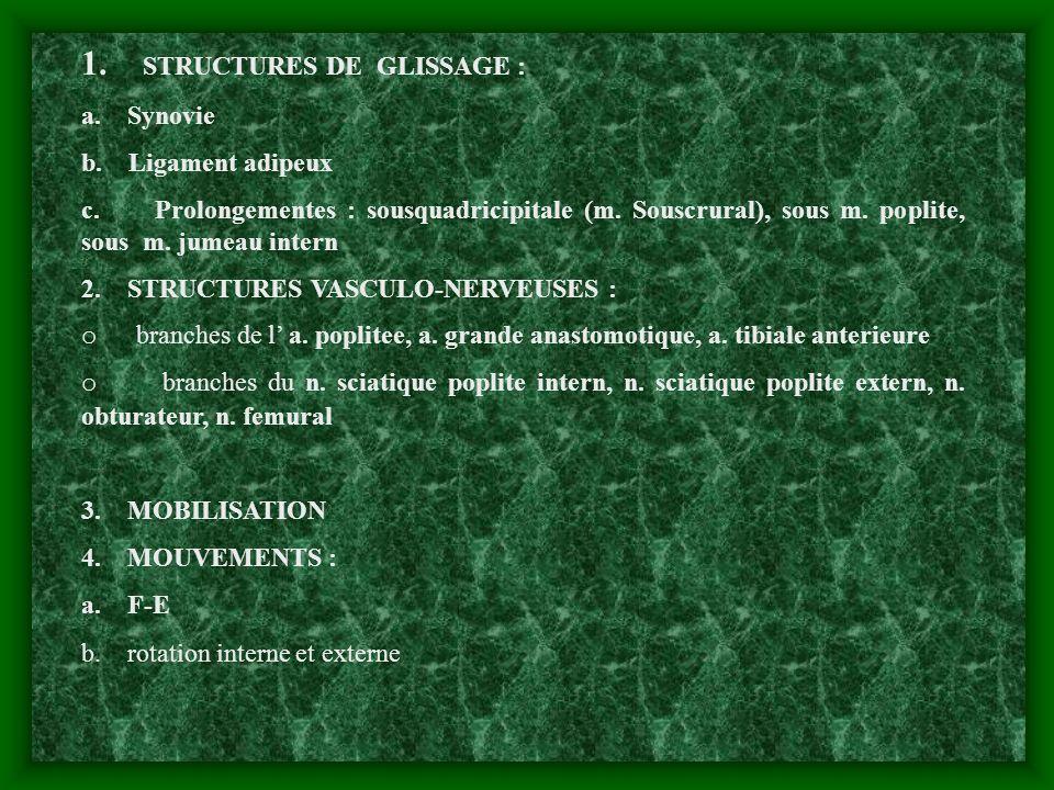 1. STRUCTURES DE GLISSAGE : a. Synovie b. Ligament adipeux c. Prolongementes : sousquadricipitale (m. Souscrural), sous m. poplite, sous m. jumeau int