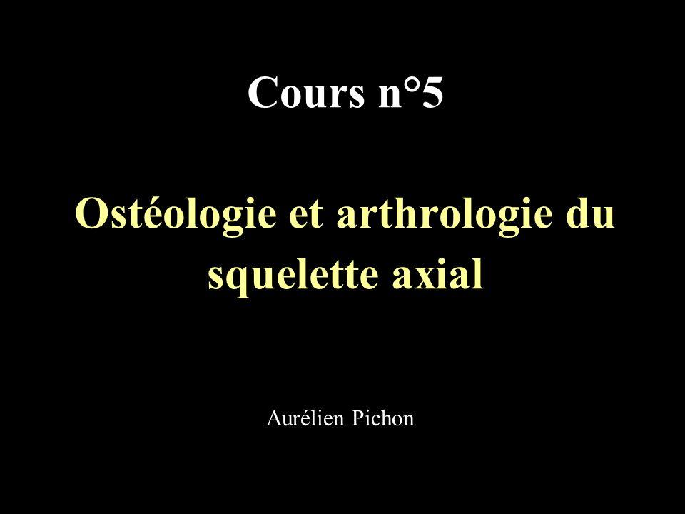 Cours n°5 Ostéologie et arthrologie du squelette axial Aurélien Pichon