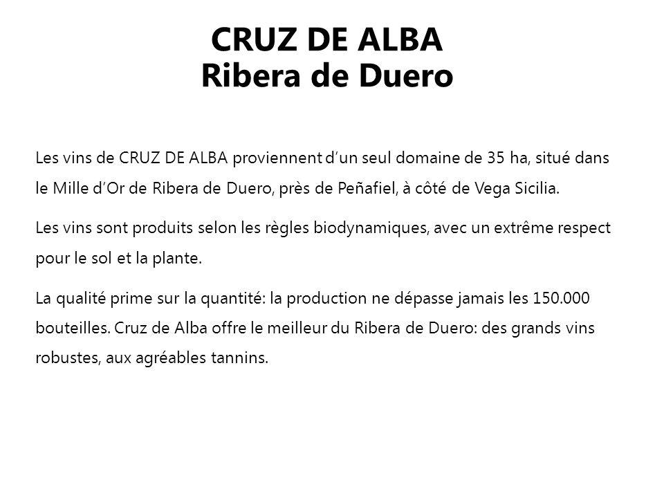 CRUZ DE ALBA Ribera de Duero Les vins de CRUZ DE ALBA proviennent dun seul domaine de 35 ha, situé dans le Mille dOr de Ribera de Duero, près de Peñafiel, à côté de Vega Sicilia.