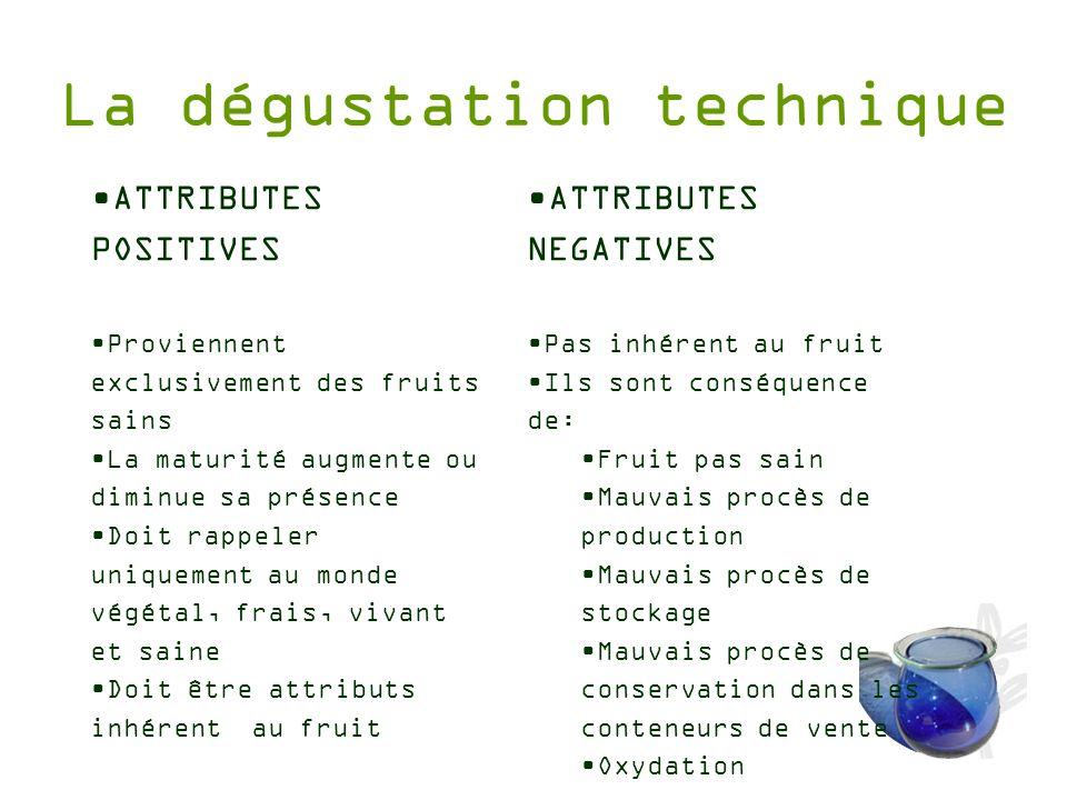 La dégustation technique ATTRIBUTES POSITIVES Proviennent exclusivement des fruits sains La maturité augmente ou diminue sa présence Doit rappeler uni