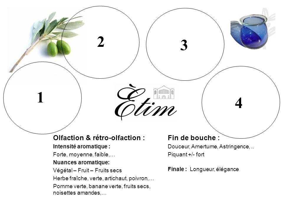 1 2 3 4 4 3 2 1 NUANCES DES AROMES Intensité aromatique : Forte, moyenne, faible,… Végétal : Herbe fraîche/verte, … Artichaut, poivrons,... Fruits : p