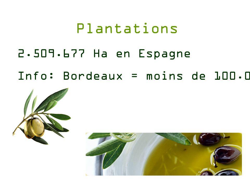 Texte du tarif : A coté du vin, l huile d olive a toujours eu une place importante dans la coopérative agricole de Falset.