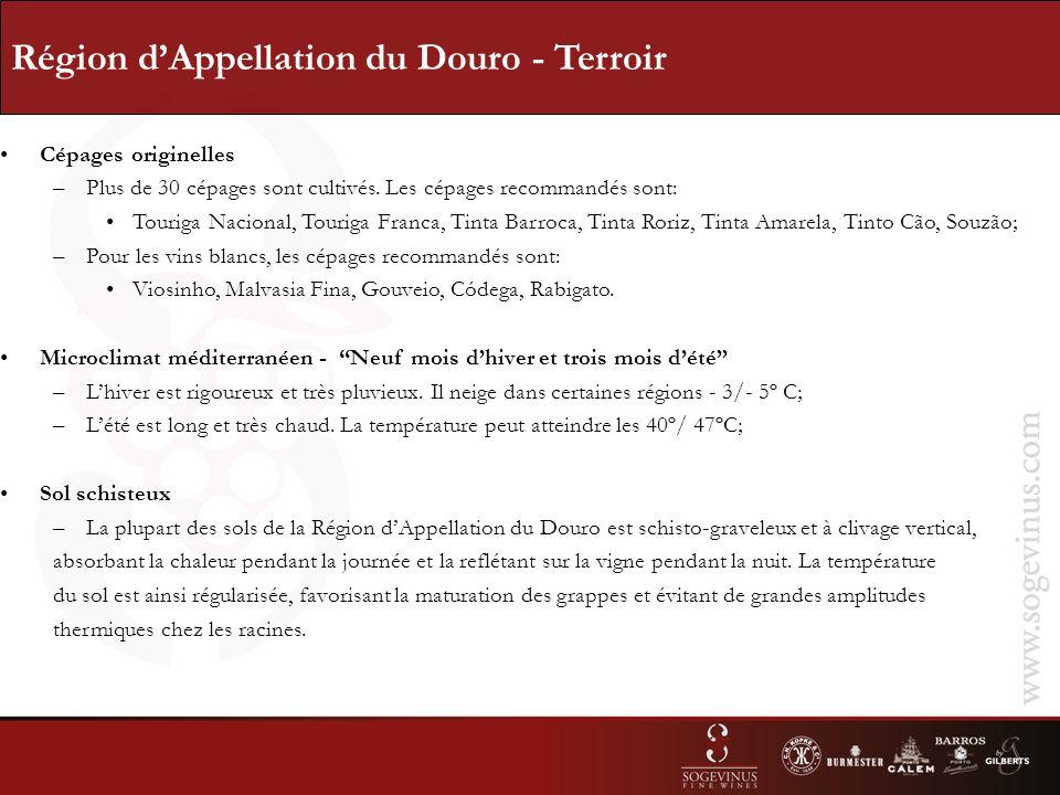Région dAppellation du Douro - Terroir Cépages originelles –Plus de 30 cépages sont cultivés.