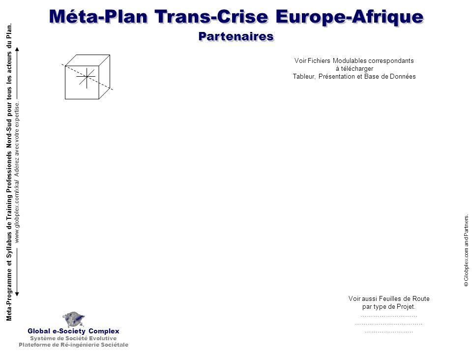 Méta-Plan Trans-Crise Europe-Afrique © Globplex.com and Partners. Global e-Society Complex Système de Société Evolutive Plateforme de Ré-ingénierie So