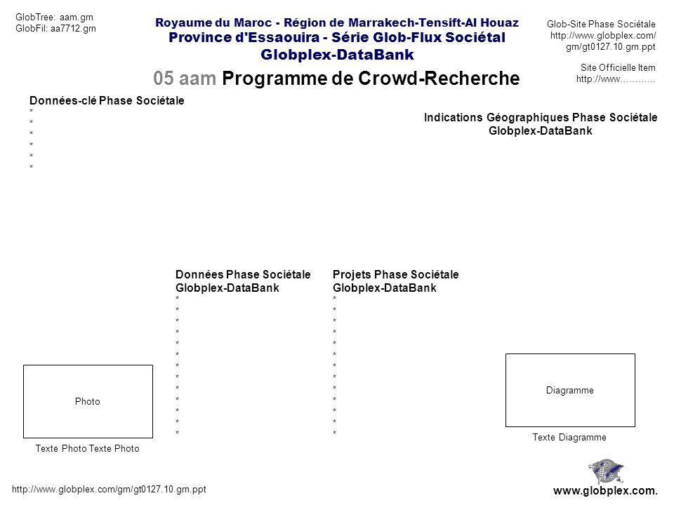 05 aam Programme de Crowd-Recherche http://www.globplex.com/grn/gt0127.10.grn.ppt www.globplex.com.