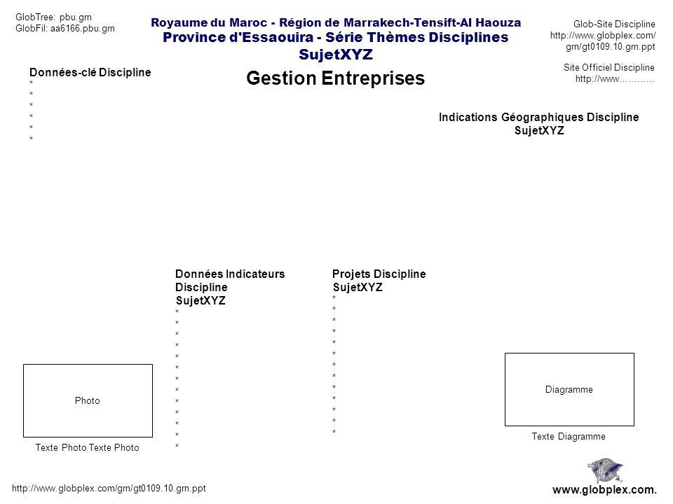 Royaume du Maroc - Région de Marrakech-Tensift-Al Haouza Province d Essaouira - Série Thèmes Disciplines SujetXYZ Gestion Entreprises http://www.globplex.com/grn/gt0109.10.grn.ppt www.globplex.com.