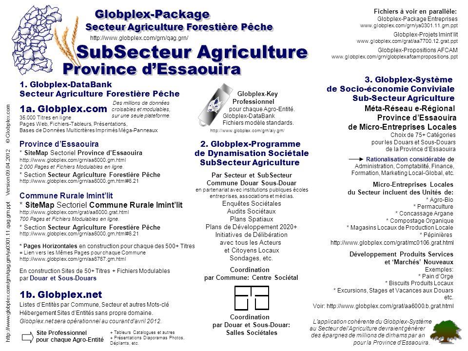Secteur Agriculture Forestière Pêche Globplex-Package Province dEssaouira 1.