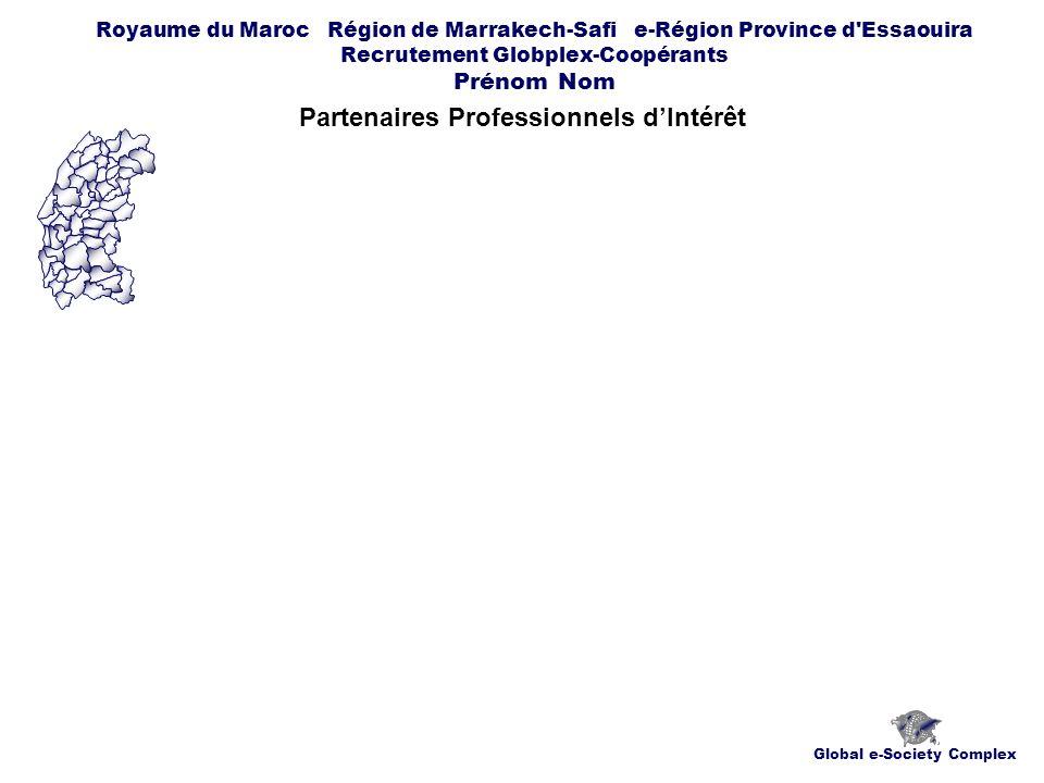 Global e-Society Complex Royaume du Maroc Région de Marrakech-Safi e-Région Province d Essaouira Recrutement Globplex-Coopérants Prénom Nom Partenaires Professionnels dIntérêt