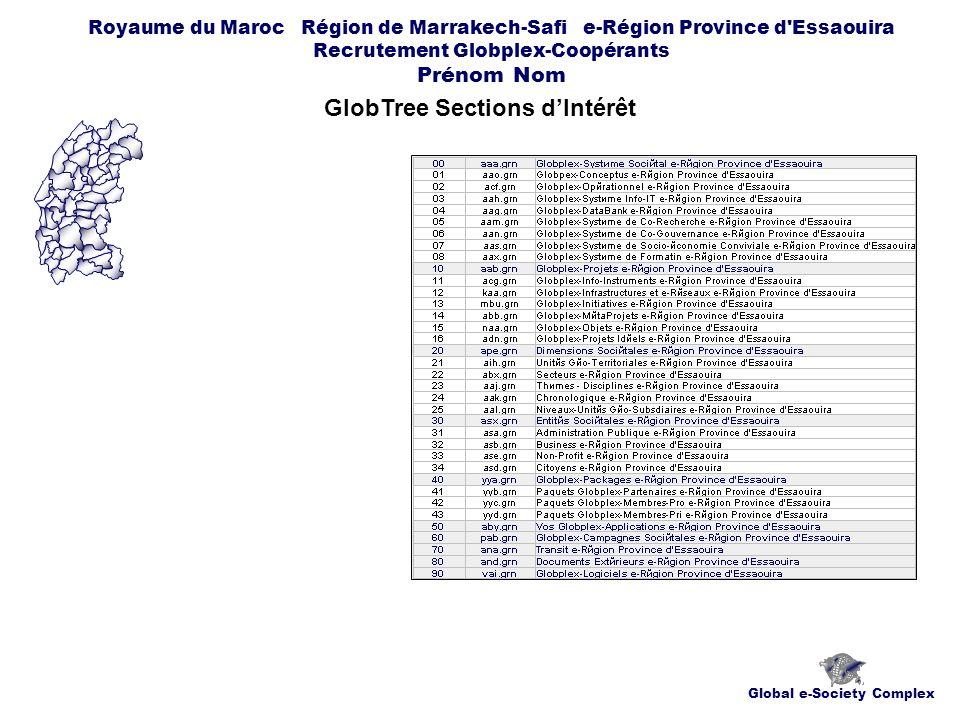 Global e-Society Complex Royaume du Maroc Région de Marrakech-Safi e-Région Province d Essaouira Recrutement Globplex-Coopérants Prénom Nom GlobTree Sections dIntérêt