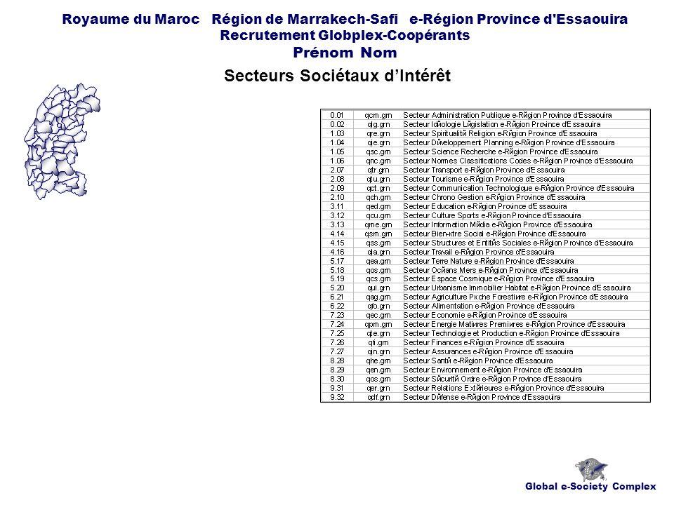 Global e-Society Complex Royaume du Maroc Région de Marrakech-Safi e-Région Province d Essaouira Recrutement Globplex-Coopérants Prénom Nom Secteurs Sociétaux dIntérêt