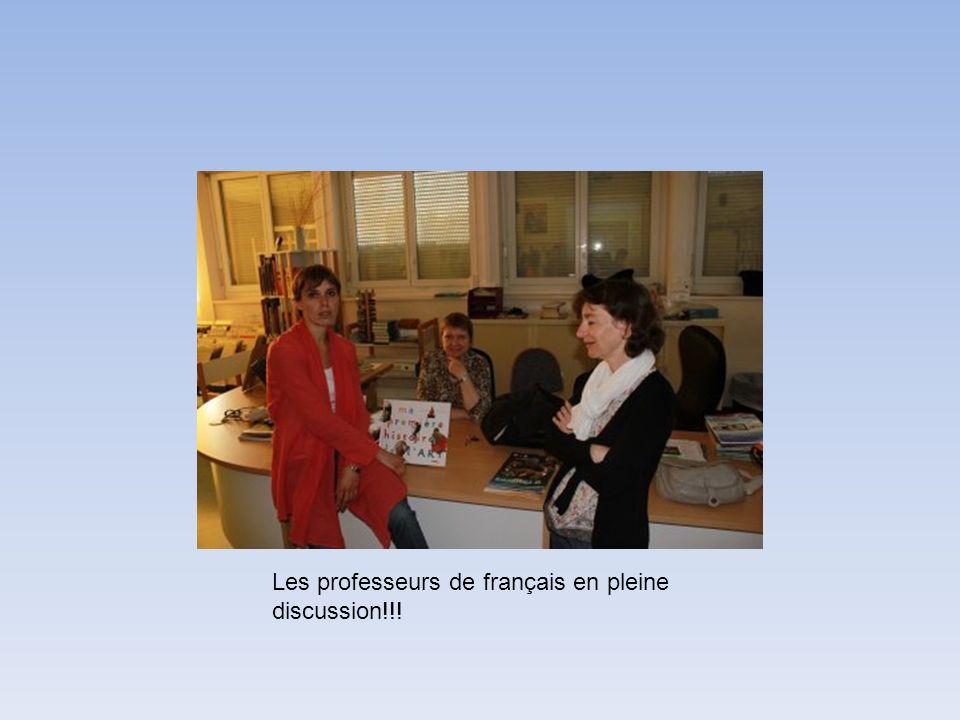 Les professeurs de français en pleine discussion!!!