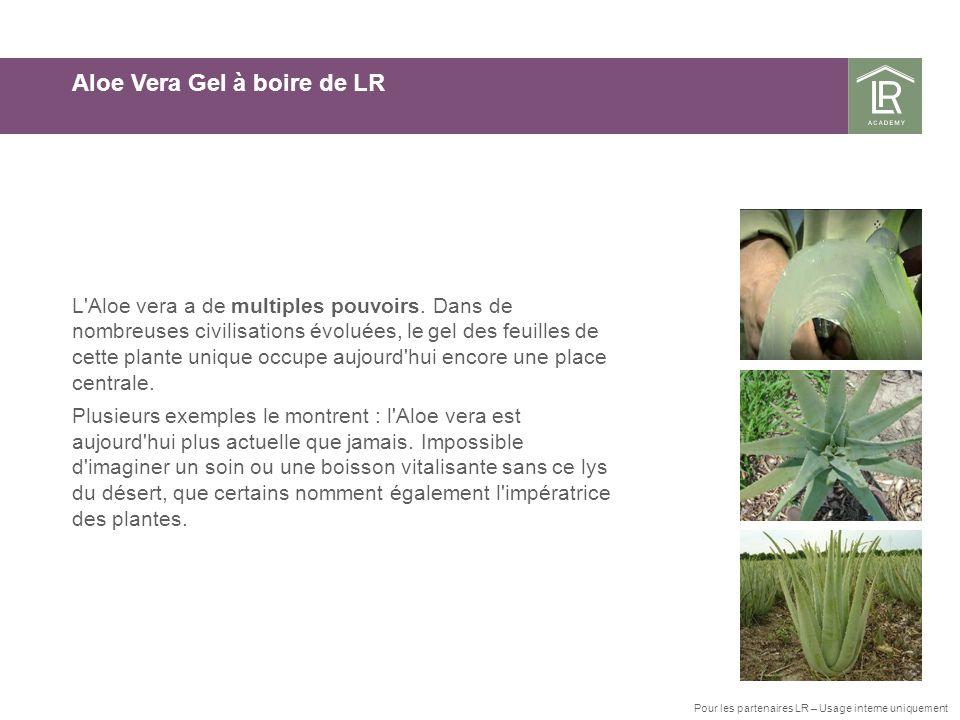 Clip 4 pour « plein écran » Aloe Vera Gel à boire de LR L Aloe vera a de multiples pouvoirs.