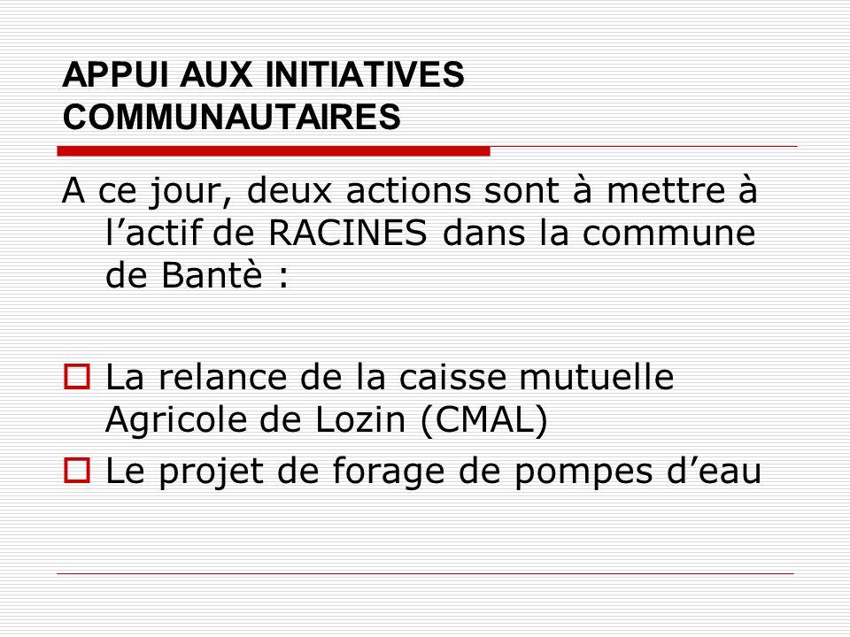 APPUI AUX INITIATIVES COMMUNAUTAIRES A ce jour, deux actions sont à mettre à lactif de RACINES dans la commune de Bantè : La relance de la caisse mutuelle Agricole de Lozin (CMAL) Le projet de forage de pompes deau