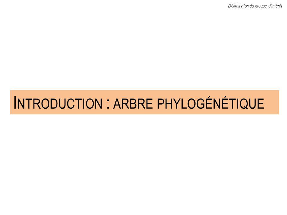 I NTRODUCTION : ARBRE PHYLOGÉNÉTIQUE Délimitation du groupe d'intérêt