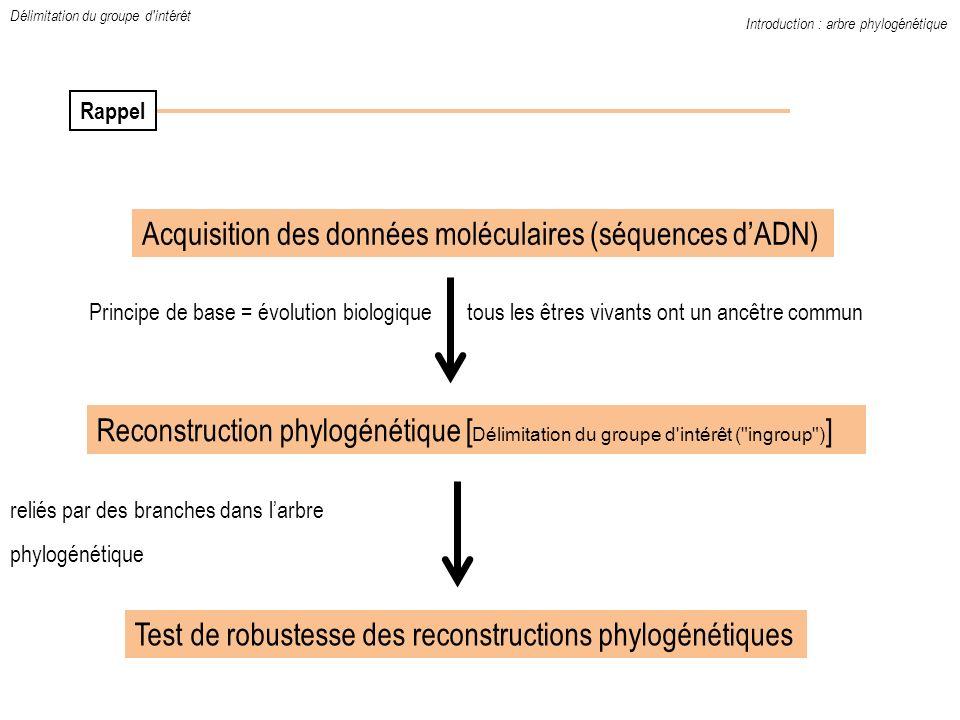 Acquisition des données moléculaires (séquences dADN) Reconstruction phylogénétique [ Délimitation du groupe d'intérêt (