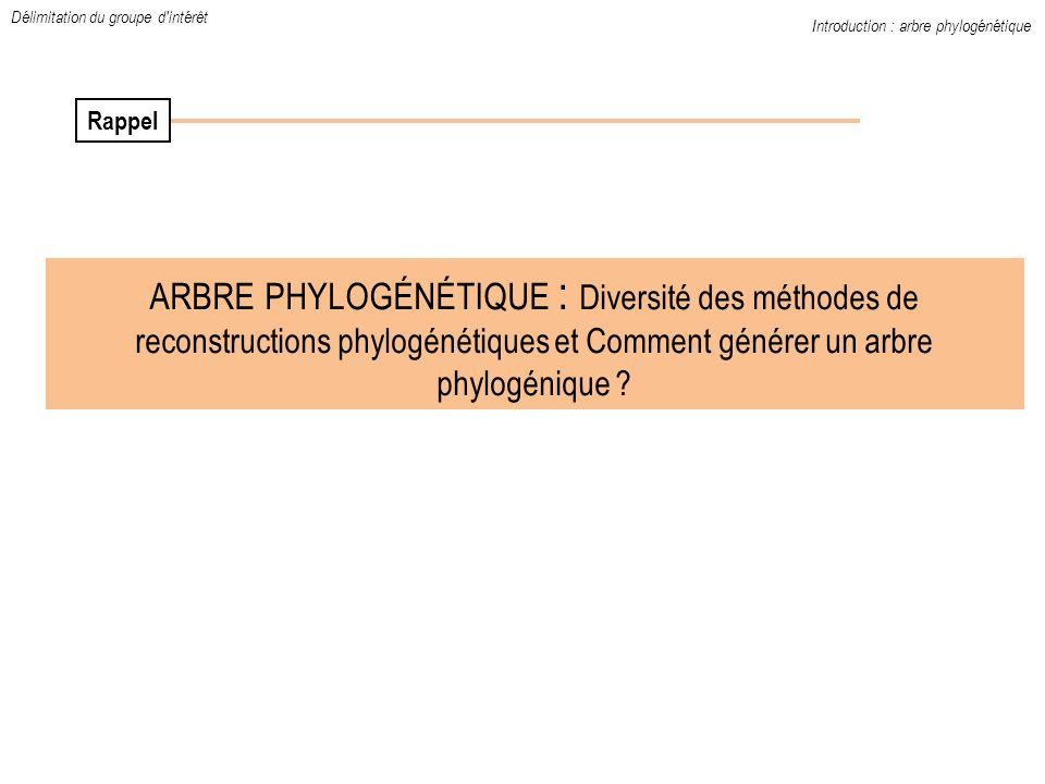 ARBRE PHYLOGÉNÉTIQUE : Diversité des méthodes de reconstructions phylogénétiques et Comment générer un arbre phylogénique ? Introduction : arbre phylo