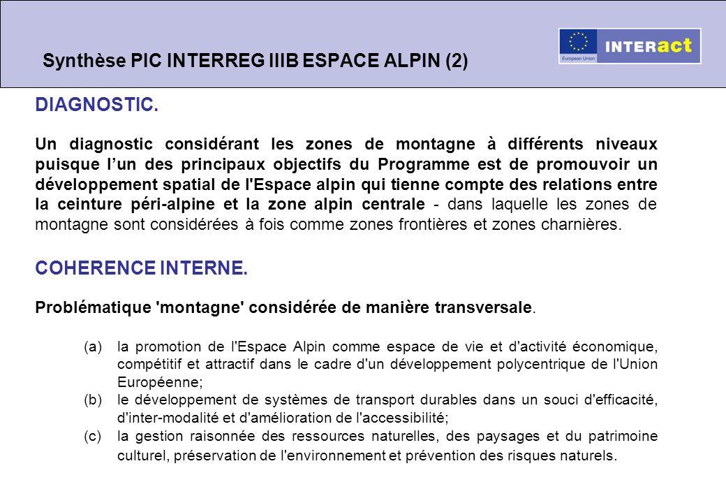 Synthèse PIC INTERREG IIIB ESPACE ALPIN (2) DIAGNOSTIC.