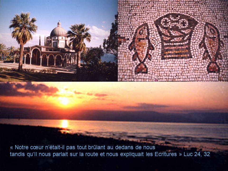 LE LAC DE TIBERIADE « Notre cœur nétait-il pas tout brûlant au dedans de nous tandis quIl nous parlait sur la route et nous expliquait les Ecritures » Luc 24, 32