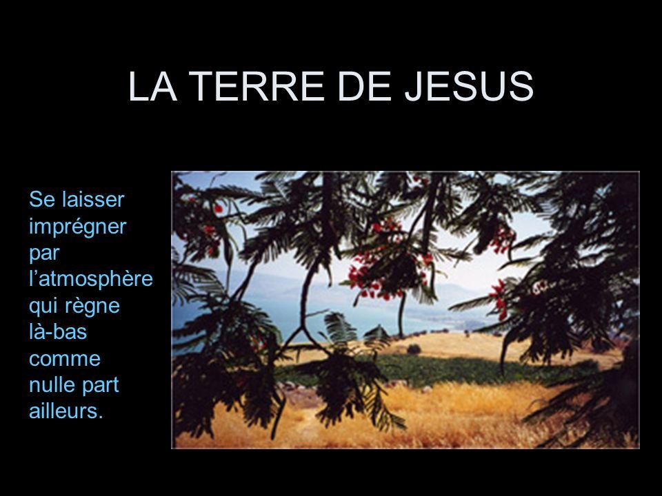 LA TERRE DE JESUS Se laisser imprégner par latmosphère qui règne là-bas comme nulle part ailleurs.