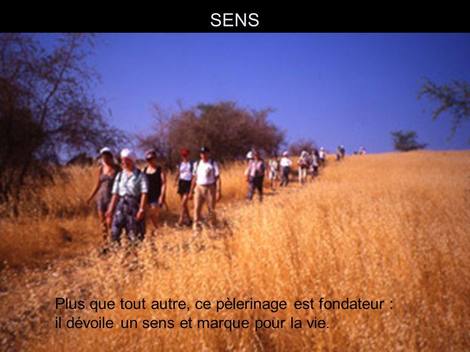 PROGRAMME Jeudi 14 juillet : envol pour Tel-Avi.Arad, premier contact avec le désert.
