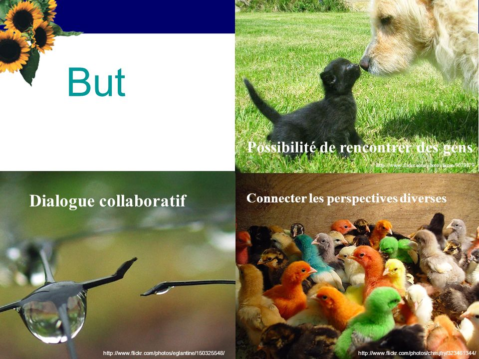 But Dialogue collaboratif Connecter les perspectives diverses Possibilité de rencontrer des gens http://www.flickr.com/photos/chrisjfry/323461344/http://www.flickr.com/photos/eglantine/150325548/ http://www.flickr.com/photos/fazen/9079179/