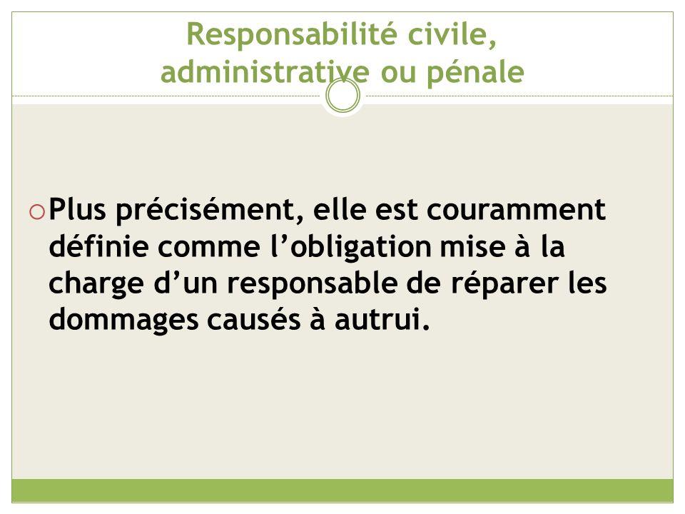 Responsabilité civile, administrative ou pénale La responsabilité civile sapplique exclusivement au secteur privé.