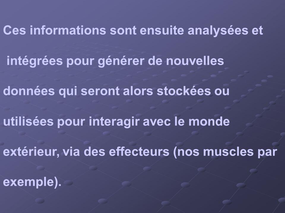 Ces informations sont ensuite analysées et intégrées pour générer de nouvelles données qui seront alors stockées ou utilisées pour interagir avec le m