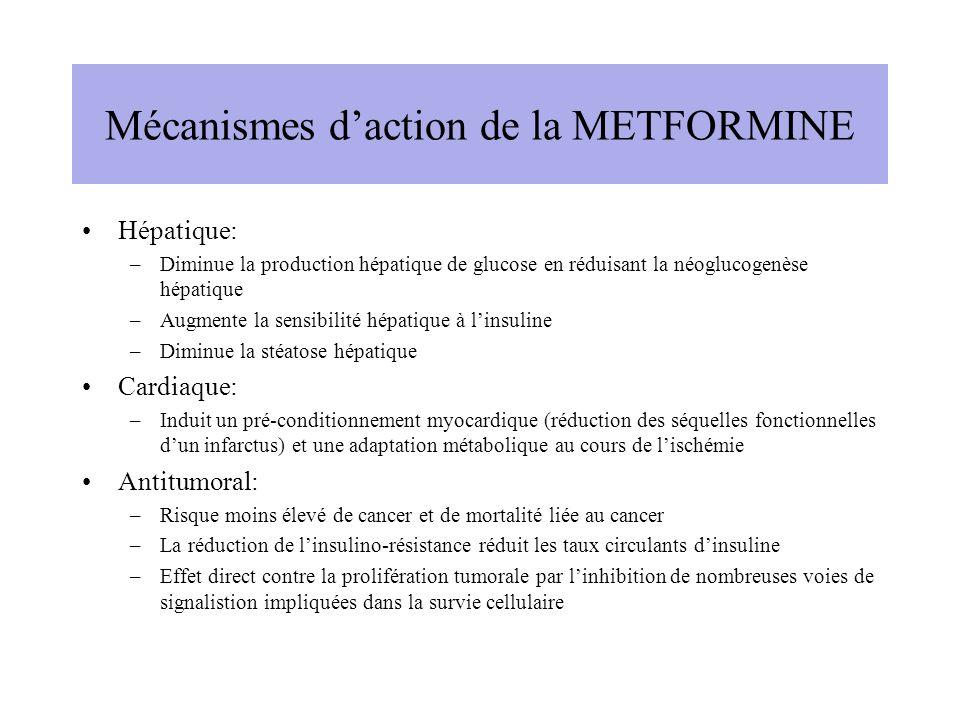 Mécanismes daction de la METFORMINE Hépatique: –Diminue la production hépatique de glucose en réduisant la néoglucogenèse hépatique –Augmente la sensibilité hépatique à linsuline –Diminue la stéatose hépatique Cardiaque: –Induit un pré-conditionnement myocardique (réduction des séquelles fonctionnelles dun infarctus) et une adaptation métabolique au cours de lischémie Antitumoral: –Risque moins élevé de cancer et de mortalité liée au cancer –La réduction de linsulino-résistance réduit les taux circulants dinsuline –Effet direct contre la prolifération tumorale par linhibition de nombreuses voies de signalistion impliquées dans la survie cellulaire