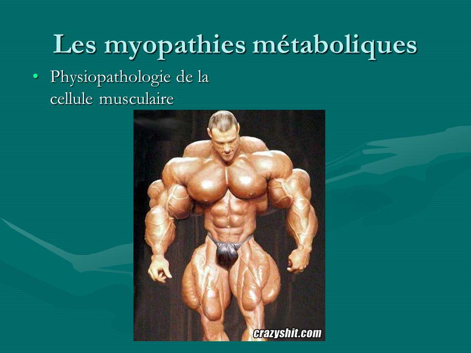 Les myopathies métaboliques Physiopathologie de la cellule musculairePhysiopathologie de la cellule musculaire