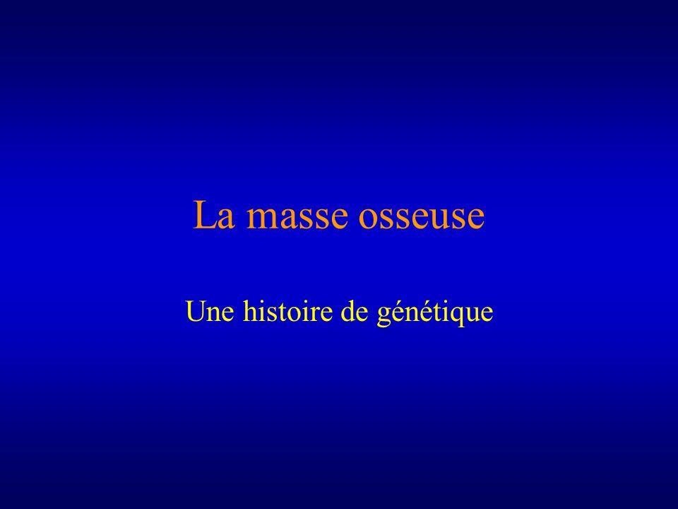 La masse osseuse Une histoire de génétique