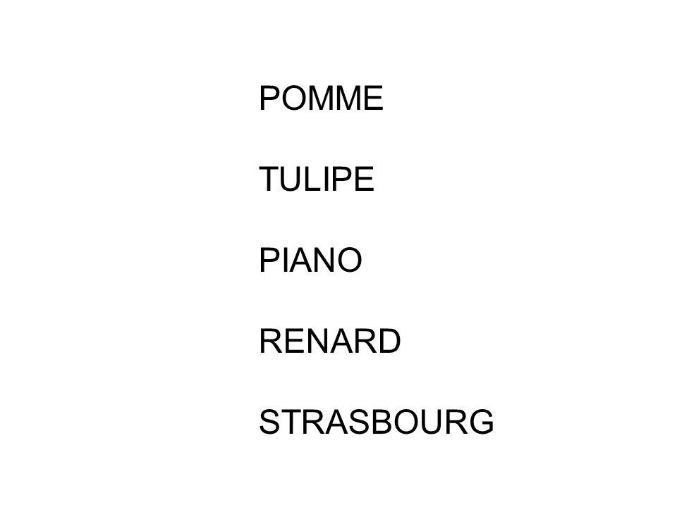 POMME TULIPE PIANO RENARD STRASBOURG