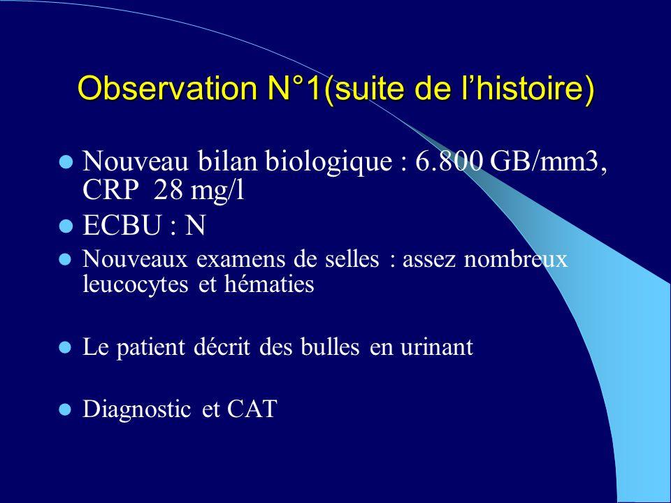 Observation N°1(suite de lhistoire) Nouveau bilan biologique : 6.800 GB/mm3, CRP 28 mg/l ECBU : N Nouveaux examens de selles : assez nombreux leucocytes et hématies Le patient décrit des bulles en urinant Diagnostic et CAT