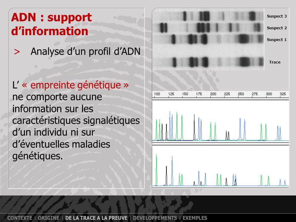>Séquences répétitives (Jeffreys, 1985) ADN : support dinformation a j f é o ai u f v e u foi a v p f o i a p o c a p o c a w p o m d y v l y h f h f