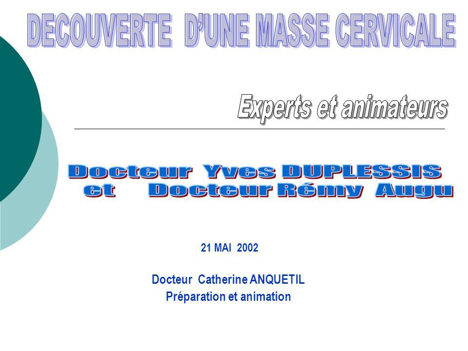 21 MAI 2002 Docteur Catherine ANQUETIL Préparation et animation