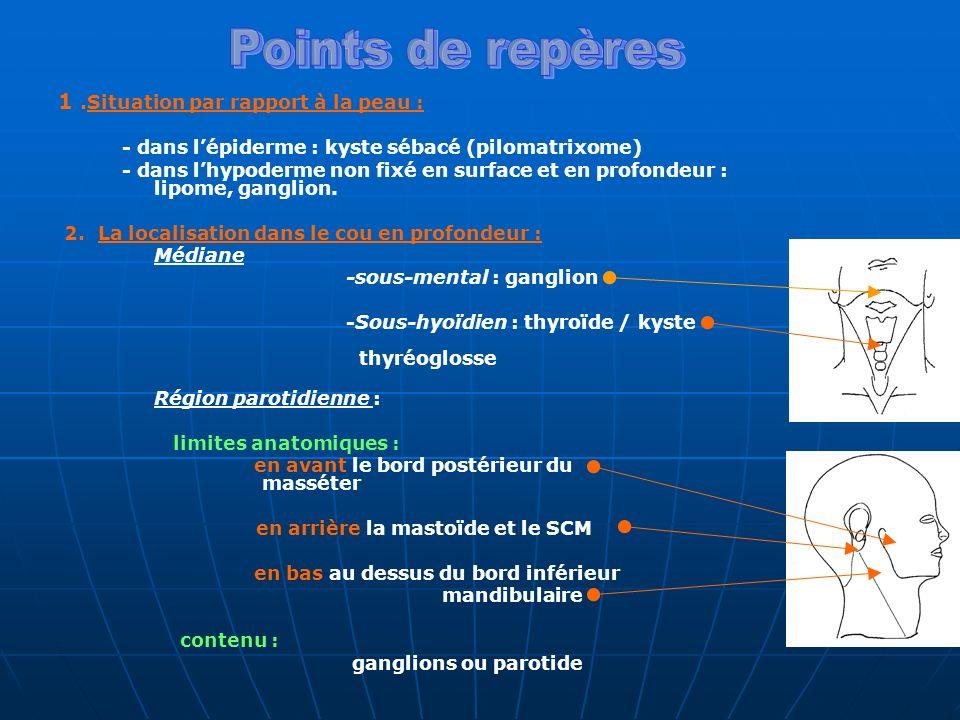 1.Situation par rapport à la peau : - dans lépiderme : kyste sébacé (pilomatrixome) - dans lhypoderme non fixé en surface et en profondeur : lipome, g