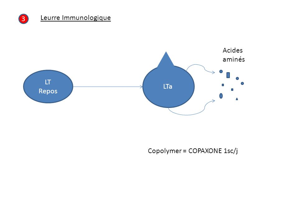 3 Leurre Immunologique LT Repos LTa Acides aminés Copolymer = COPAXONE 1sc/j