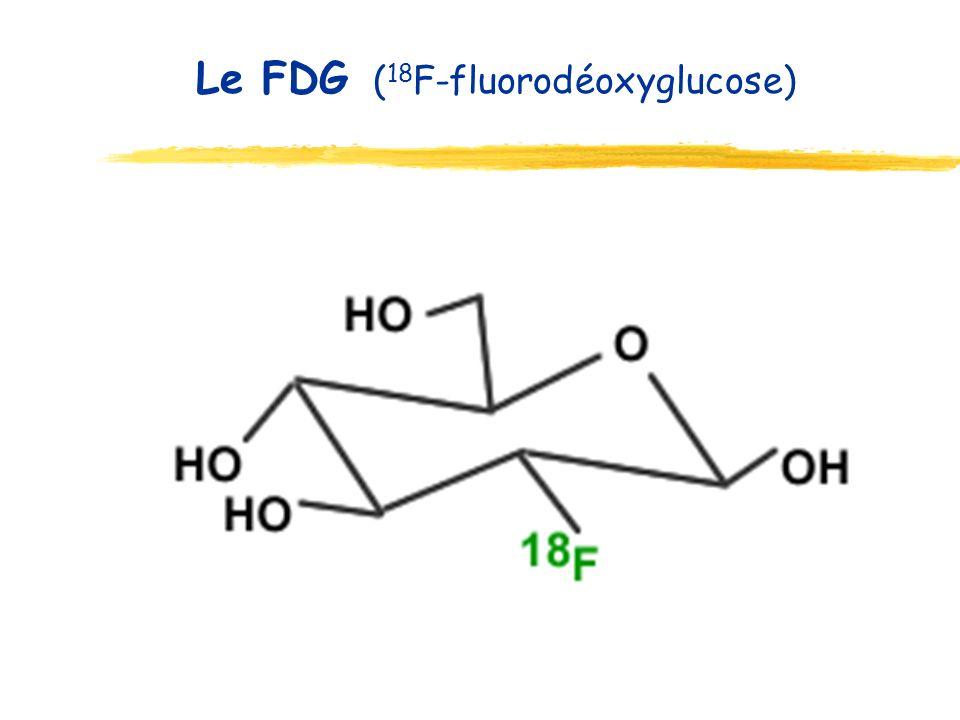 Le FDG ( 18 F-fluorodéoxyglucose)