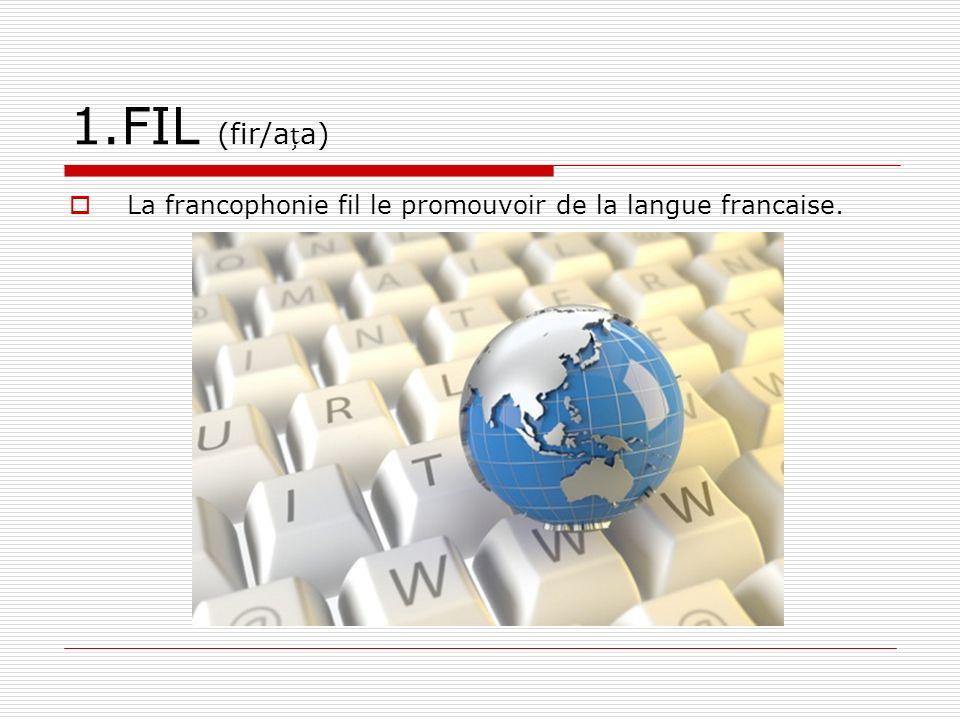 1.FIL (fir/aa) La francophonie fil le promouvoir de la langue francaise.