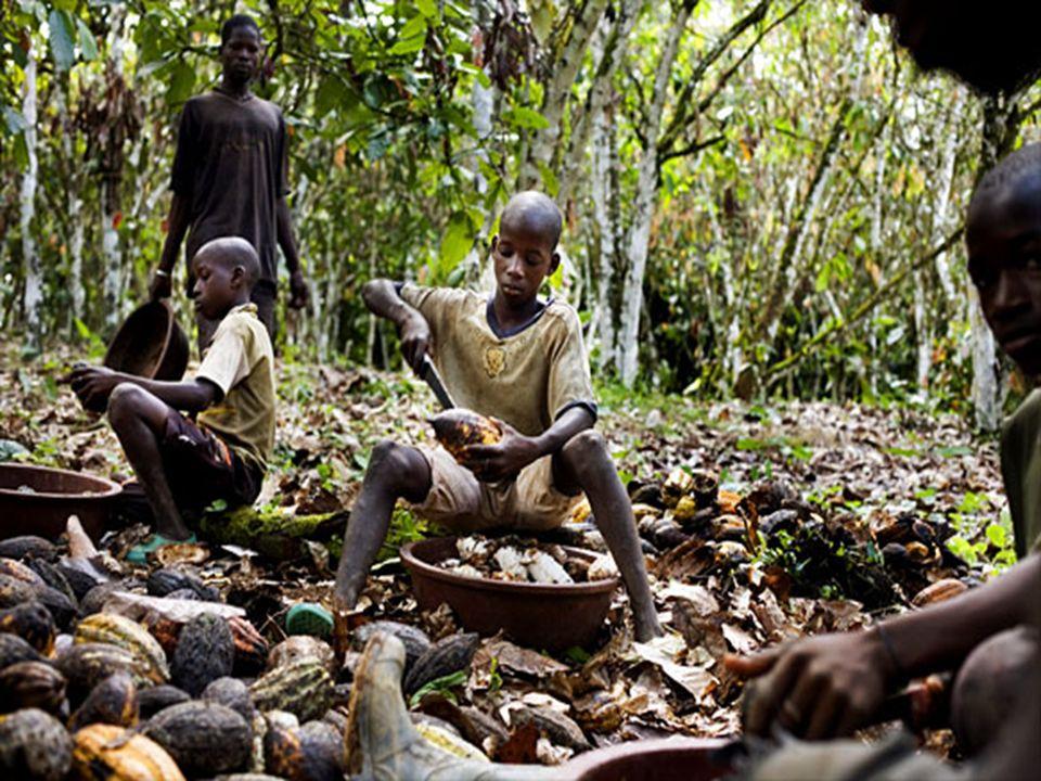 Une enquête a constaté que sur les 13,4 millions d enfants âgés entre 5 et 17, ont été engagés dans l agriculture de subsistance.