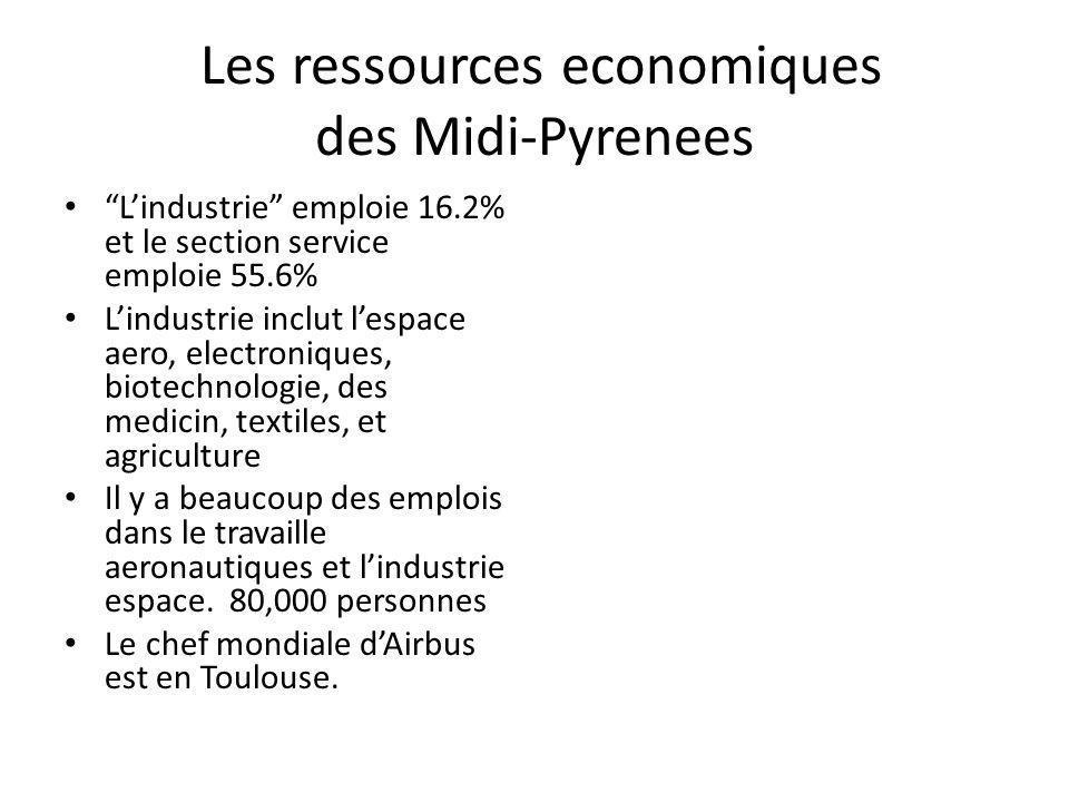 Les ressources economiques des Midi-Pyrenees Lindustrie emploie 16.2% et le section service emploie 55.6% Lindustrie inclut lespace aero, electroniques, biotechnologie, des medicin, textiles, et agriculture Il y a beaucoup des emplois dans le travaille aeronautiques et lindustrie espace.