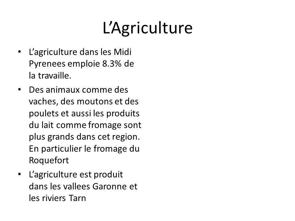 LAgriculture Lagriculture dans les Midi Pyrenees emploie 8.3% de la travaille. Des animaux comme des vaches, des moutons et des poulets et aussi les p