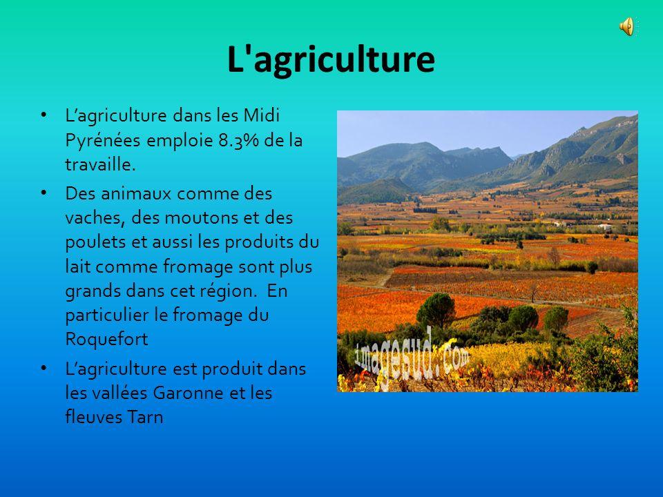 Les Ressources économiques des Midi-Pyrénées Lindustrie emploie 16.2% et la section service emploie 55.6% Lindustrie inclut lespace aéra, électronique