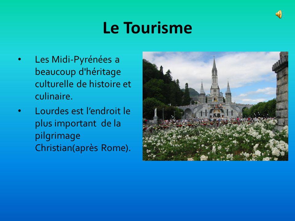 L'agriculture (cont.) Les Midi-Pyrénées est le meilleur région pour produire des graines en France. Des vins est plus important. Il y a des vins régio