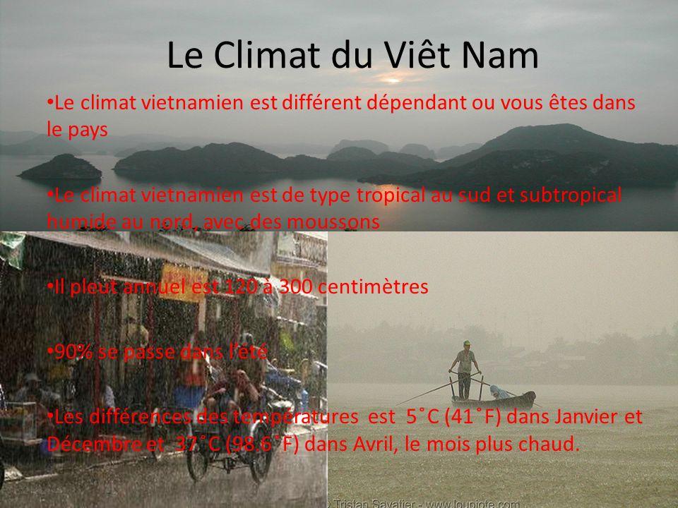 Le Climat du Viêt Nam Le climat vietnamien est différent dépendant ou vous êtes dans le pays Le climat vietnamien est de type tropical au sud et subtropical humide au nord, avec des moussons Il pleut annuel est 120 à 300 centimètres 90% se passe dans lété Les différences des températures est 5 ̊C (41 ̊F) dans Janvier et Décembre et 37 ̊C (98.6 ̊F) dans Avril, le mois plus chaud.