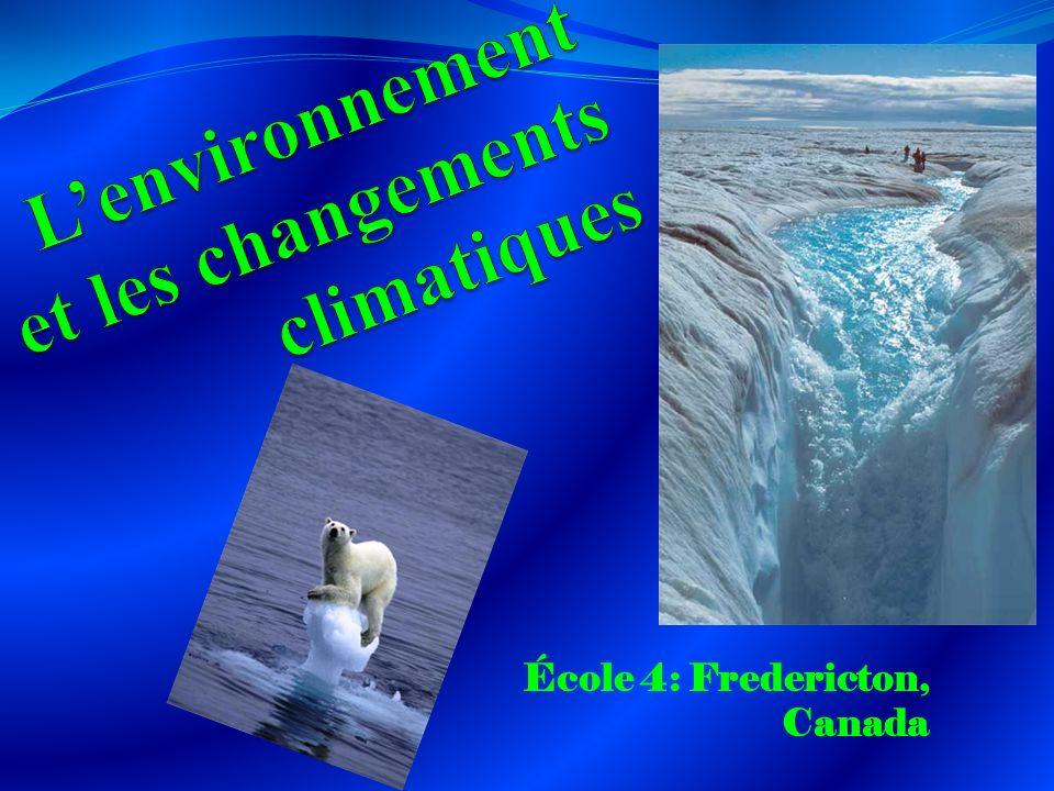 Les effets sur la vie des ours polaires Parce que la glace au nord/ Arctique du Canada fond à une pas anormalement vite, ça change la saison de nourishement pour les ours polaires.