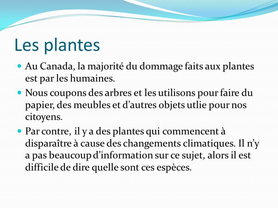 La conservation des plantes Il y a des parcs spécialement créés pour conserver la beauté naturelle de plusieurs locations au Canada.