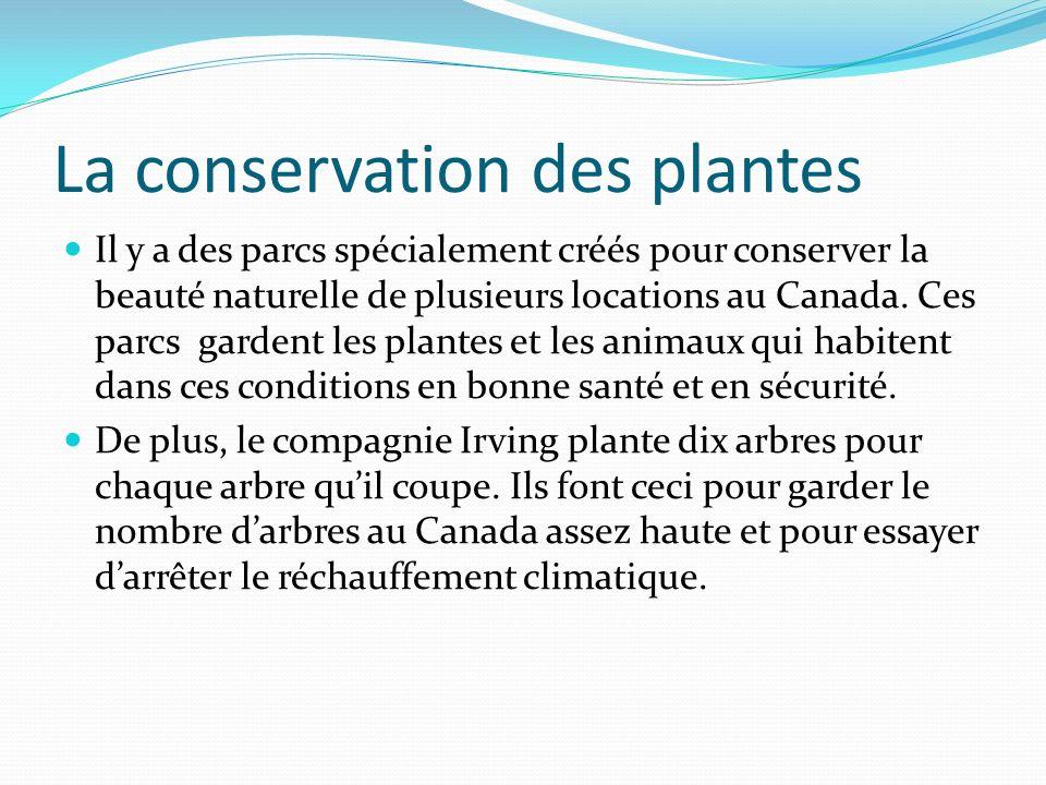 Ce quon fait pour aider Il y a beaucoup dorganisations et opérations Pour aider les animaux et les plantes en danger au Canada.