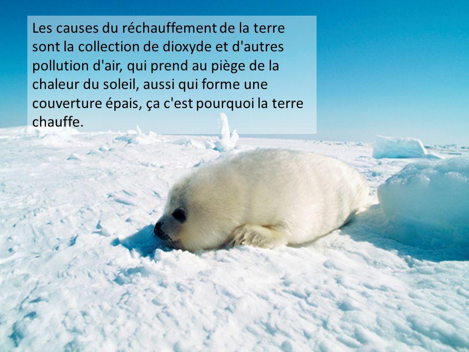 Les causes du réchauffement de la terre sont la collection de dioxyde et d'autres pollution d'air, qui prend au piège de la chaleur du soleil, aussi q
