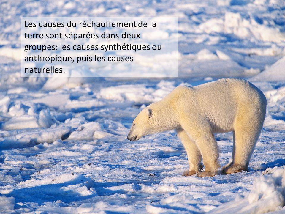 Les causes du réchauffement de la terre sont séparées dans deux groupes: les causes synthétiques ou anthropique, puis les causes naturelles.