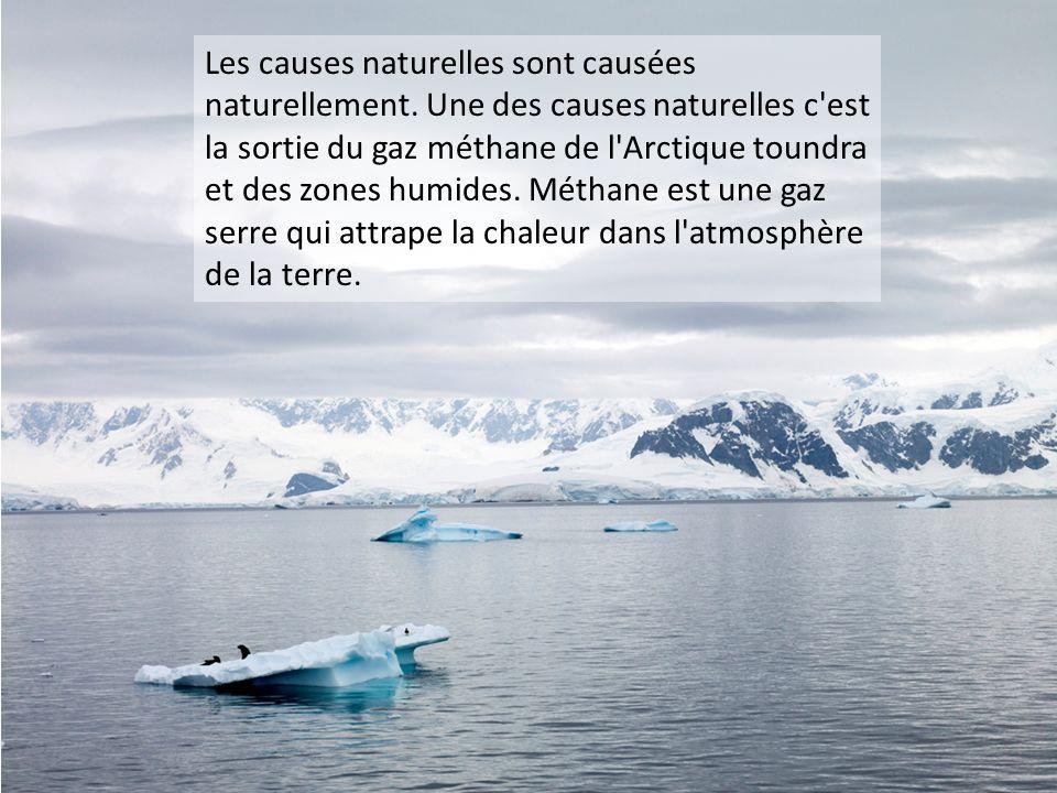 Les causes naturelles sont causées naturellement. Une des causes naturelles c'est la sortie du gaz méthane de l'Arctique toundra et des zones humides.